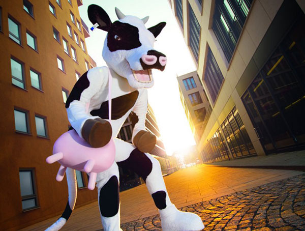 Kühe - Kostümgestaltung für europaweite Promotion Events